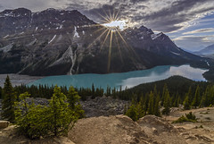 Peyto Lake (Daniel P Froese) Tags: lake peyto alberta canada rockies mountain mountains blue glacier snow photo image pictures photos images rocky sunburst sunset trees sun sunbeams clouds