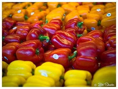 Peppers Galore (PEN-F_Fan) Tags: photoframe photoborder austin raw olympusem10markii unitedstates cameraformat mft format photography microfourthirds type m43 olympus texas miscellaneous mirrorless photoedge effect cameras bokeh shallowdepthoffield dof peppers food display market alienskin alienskinexposurex3 fujisimvelviavivid preset postprocessing