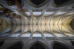 Brussels Cathedral (albireo 2006) Tags: belgium gothic gothicarchitecture vault brusselscathedral