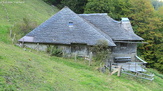 SF_IMG_8094 - Terroche, alpine pasture farm, Gruyère region - Switzerland