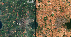 Denmark scorched (europeanspaceagency) Tags: esa europeanspaceagency space universe cosmos spacescience science spacetechnology tech technology earthfromspace observingtheearth earthobservation satelliteimage copernicus sentinel denmark drought comparison europe northerneurope scandinavia summer