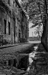 Aquela Rua... Fotos: Marcus Cabaleiro Site: https://marcuscabaleirophoto.wixsite.com/photos  Blog http://marcuscabaleiro.blogspot.com.br/   #marcuscabaleiro #santos #sp #brasil #rua #centrohistórico #centro #imagem #arte #nikon #bw #pb #photographer #braz (marcuscabaleiro4) Tags: zonaportuária brazil vagão proibido imagem brasil reflexo arte nikon porto pb paralelepipido marcuscabaleiro bw arquitetura centro photographer centrohistórico poçadágua sp photography santos rua