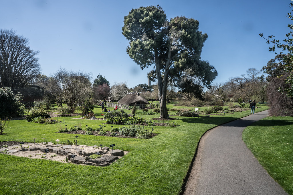 VISIT TO THE NATIONAL BOTANICAL GARDENS [GLASNEVIN DUBLIN]-138524