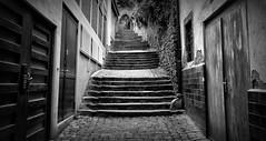Miltenberg Gasse (wernerfunk) Tags: blackwhite schwarzweiss street franken
