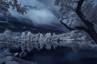 Clouds And Tree Reflections In Infrared At Santee Lakes Number 5