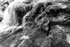 #blackandwhitephotography #blackandwhite #photographyoftheday #photooftheday #photography #waterfall #water #flickr #naturelovers #nature_photography (salam.jana) Tags: blackandwhitephotography blackandwhite photographyoftheday photooftheday photography waterfall water flickr naturelovers naturephotography