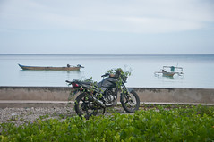 DSC_0021 (yakovina) Tags: silverseaexpeditions indonesia papua new guinea island kai archipelago