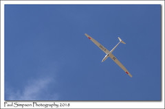 G-TVGC Glider (Paul Simpson Photography) Tags: gtvgc glider plane aircraft aeroplane airplane bluesky summer flying flyinghigh paulsimpsonphotography imagesof imageof photoof photosof gliding thermals july 2018