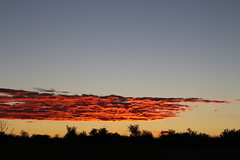 Fiery Skies (Rckr88) Tags: wolwespruitnaturereserve northwestprovince southafrica wolwespruit nature reserve north west province south africa fiery skies fieryskies fierysky sky clouds cloud cloudy cloudysky sun sunset sunlight sunsets naturalworld outdoors travel travelling