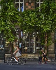 (thierrylothon) Tags: aquitaine gironde bordeaux nature personnage collection portfolio phaseone captureonepro c1pro flickr fluxapple lumière nouvelleaquitaine france fr