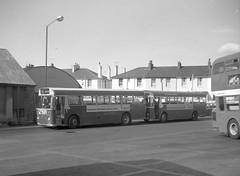 A fine pair. (Renown) Tags: bus singledecker aec reliance parkroyal devongeneral paignton devon busstation