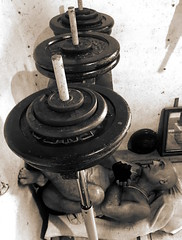 Heavy Thoughts (licornenoir) Tags: man home gym leg press weight training bodybuilding natural plates effort rest pause sepia old