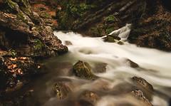 Fonts de l'Adou (mfiguero9) Tags: river riu fonts ladou bergueda landscape nikon d800 nikkor 1635 agua long exposure exposicion