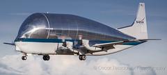 NASA Super Guppy SG (Oscar Zelada Jr) Tags: aviation super guppy nasa sg aero spaceliner airport space cargoplane aircargo