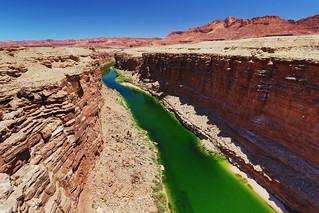Colorado River Green