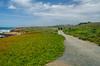 2018-04-15 Bluff Trail hike-13.jpg (fjkehljr) Tags: california unitedstatesofamerica fiscaliniranchpreserve locations cambria unitedstates us