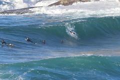 2018.07.15.08.32.41-ESBS Bronte Seq 03-002 (www.davidmolloyphotography.com) Tags: bodysurf bodysurfing bodysurfer bronte australia newsouthwales sydney surf surfing wave