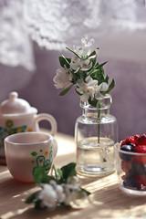 Jasmine and tea (kinmegami) Tags: rement paper miniatureflowers miniature 16 rilakkumanaturalmarket lifewiththesmallbird