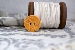 orange fennel button (Cherryhill Studio) Tags: buttons ceramic ceramicclay fennel haberdashery orange