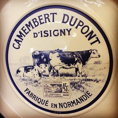 French Cow Plate (booboo_babies) Tags: french normandie normandy cheese ceramic plate whiteandblue cows camembert dairy dairyfarm