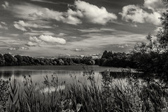 "from my series ""the lake"" (ro_ha_becker) Tags: landschaft landscape himmel sky clouds wolken monochrome zwartwit schwarzweiss biancoenero blackandwhite blancoynegro blancetnoir leitzelmar3535mm leicam9"
