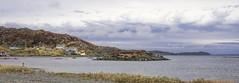 Besoin d'air frais! (M. Carpentier) Tags: terreneuve twillingate cloud nuage mer borddemer ocean seashore bleu