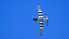 P-51 Mustang, Duluth Air & Aviation Expo - Duluth MN, 07/07/18 (TonyM1956) Tags: elements sonyalphadslr