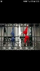 Allez les bleus ! (nic0v0dka) Tags: bra soutif soutiengorge brassiere lingerie supporter football worldcup
