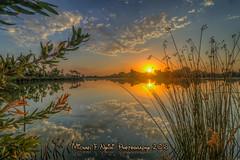 Peekaboo Sun (Michael F. Nyiri) Tags: lakemachado harborcityca kenmalloyharborregionalpark sunrise lake reflections color