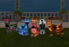 My collection of Hell-O-Kitteh (Alexandra Twitchy) Tags: firestorm secondlife kittycats breedables virtual reality secondlife:region=bastet secondlife:parcel=castleincantatusforestdragonsmeldhamlet secondlife:x=16 secondlife:y=232 secondlife:z=58