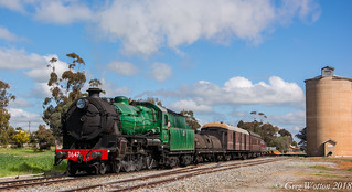Coolamon Day Train