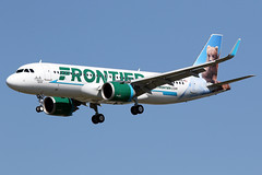"""FRONTIER  AIRLINES / Airbus   A 320 NEO   F-WWDG   msn 8320  """"JOJO The Grizzly Bear"""" / LFBO - TLS / juillet 2018 (gimbellet) Tags: canon nikon spotting spotter boeing blagnac lfbo planes transport transportation toulouse tls toulouseblagnac aviation airbus a320 a330 a340 aircraft avions airplanes aeroport a380 atr airport a350 aeronautique airplane aeroplane a320neo"""