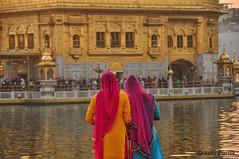 DSC_0839 (Ben Perek Photography) Tags: india punjab amritsar asia hindu sikh golden temple incredible beauty sunset sunrise sun gold piligrimage