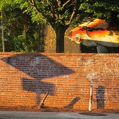 fish-eye view (Jim_ATL) Tags: koi fish mural risingredlotus beltline atlanta explored