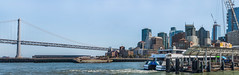bay ferry hydrus panorama (pbo31) Tags: bayarea california nikon d810 color july 2018 summer boury pbo31 sanfrancisco city urban blue embarcadero bay sail ferry passenger baybridge 80 bridge skyline panoramic large stitched panorama dock pier ferrybuilding