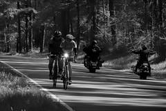 Wing Man (VarietyHour) Tags: road bike cycle trees cyclist fuji xpro2