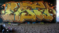 OLDENBURG - BRIDGE GALLERY / bridges near the city center - Brücken in Innenstadtnähe / Graffiti, street art - 306th picture (tusuwe.groeber) Tags: projekt project lovelycity graffiti germany deutschland lowersaxony oldenburg streetart niedersachsen city stadt farbig farben favorit colourful colour sony sonyphotographing nex7 bunt red rot art gebäude building gelb grün green yellow abs psk bridgegallery bridge bridges brücke brücken brückenkunst präventionsrat marschweg westfalendamm niedersachsendamm cloppenburgerstrase
