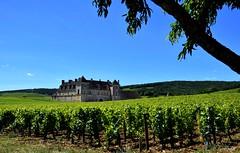 Château du clos de Vougeot (BelSoq) Tags: vignoble château bourgogne