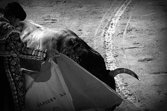 Détails de Ceret 2017 (aficion2012) Tags: ceret france francia corrida bull fight bullfight tauromaquia tauromachie toros toro taureaux escolar gill alberto aguilar torero toreador matador 2017 capa capote capear capeando capeador bw monochrome catalogne catalunya cataluña