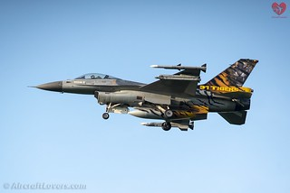 Belgian Air Component F-16AM Fighting Falcon *31 Tigers*