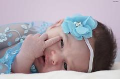 Alycia (Katia Debray) Tags: bébé baby nouveauné portrait pastel naissance couleurs babygirl yeux tendresse lovely canon5dsr france 1000v40f