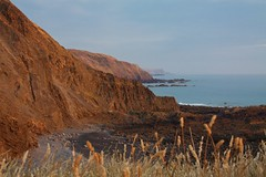 Hartland at Sunset (kernowrules) Tags: kernowrules hartland north devon england uk summer headland coast atlantic sea grass warm colour seascape hss