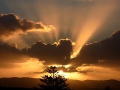 Sunset in Auckland NZ (♥ L'humoureuse :-)) Tags: auckland sunset newzealand