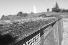 leading to a lighthouse B&W (harrypembo99) Tags: lighthouse fence grains leading follow sydney australia