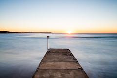 STARING AT THE SUN (scatrd) Tags: 2018 northernbeaches country nikon coastal deewhy mynikonlife australia jasonbruth deewhybeach nikond810 sydney d810 newsouthwales nsw au