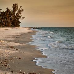 The Beach (another_scotsman) Tags: naples florida beach sunset shore seascape sky