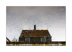 C'est une maison verte. (Scubaba) Tags: europe paysbas couleurs maison canal reflet house waterway reflection