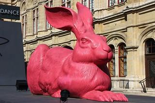 Pink Hare Vienna State Opera House -Austria -070518 (3)
