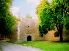 Kalemegdan, old gate (Superoperater hero) Tags: beograd fortress green kalemegdan medieval photos tree tvrdjava gate