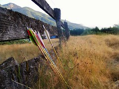 Archery and Fencing